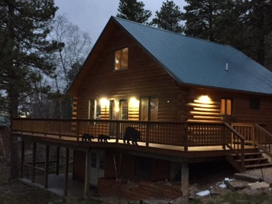 Northern Stars Cabin - Image 1 - Lead - rentals
