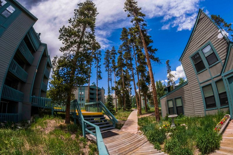 Treehouse - Treehouse 2 bed Loft 2 bath - Wildernest - rentals