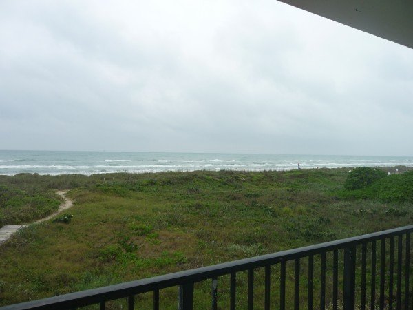 CONTINENTAL #205: 2 BED 1 BATH - Image 1 - South Padre Island - rentals