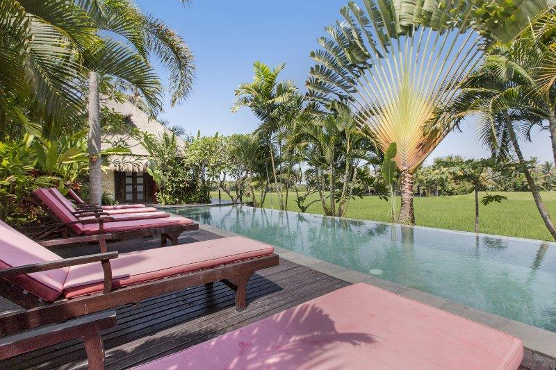 The Pool - Luxury Villa Million$ Rice Field Views - Ubud - rentals