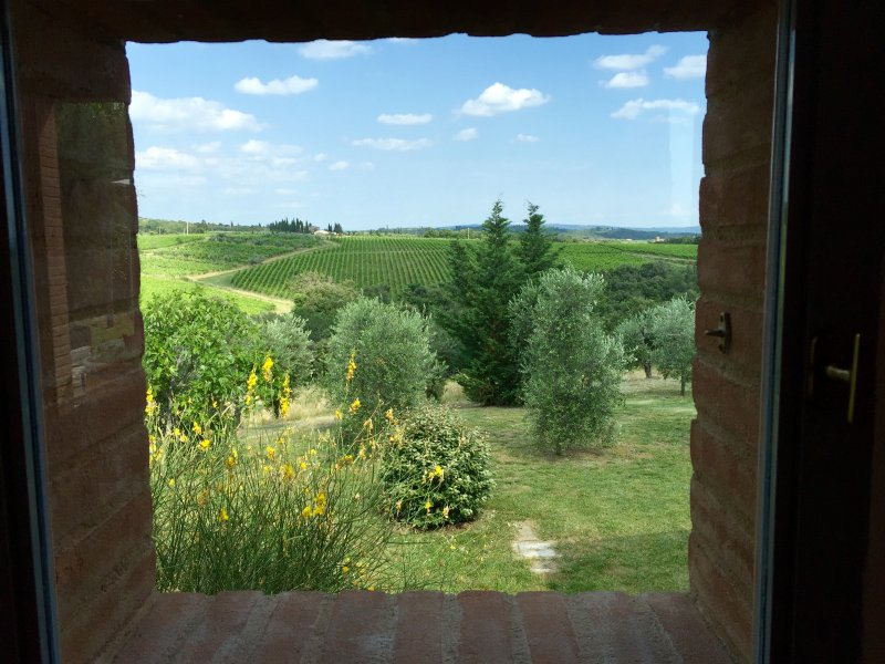 The View from each house - Gorgeous Chianti Vineyards, Private Home, Long Views to Siena! - Siena - rentals