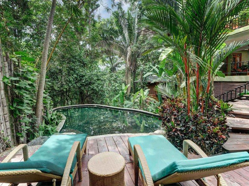 Casa de Las Brisas-Tropical Luxury Ocean View Home - Image 1 - Manuel Antonio National Park - rentals
