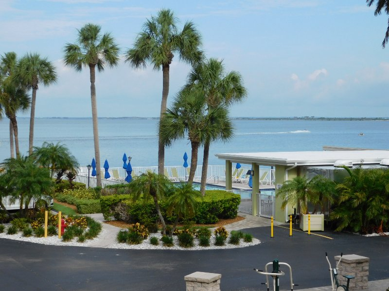 View from the unit. - Waterfront - Downtown, Beaches, Stadium, Shopping - Tampa - rentals