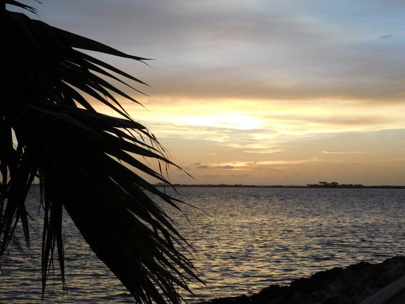 Waterfront - Downtown, Beaches, Stadium, Shopping - Image 1 - Tampa - rentals