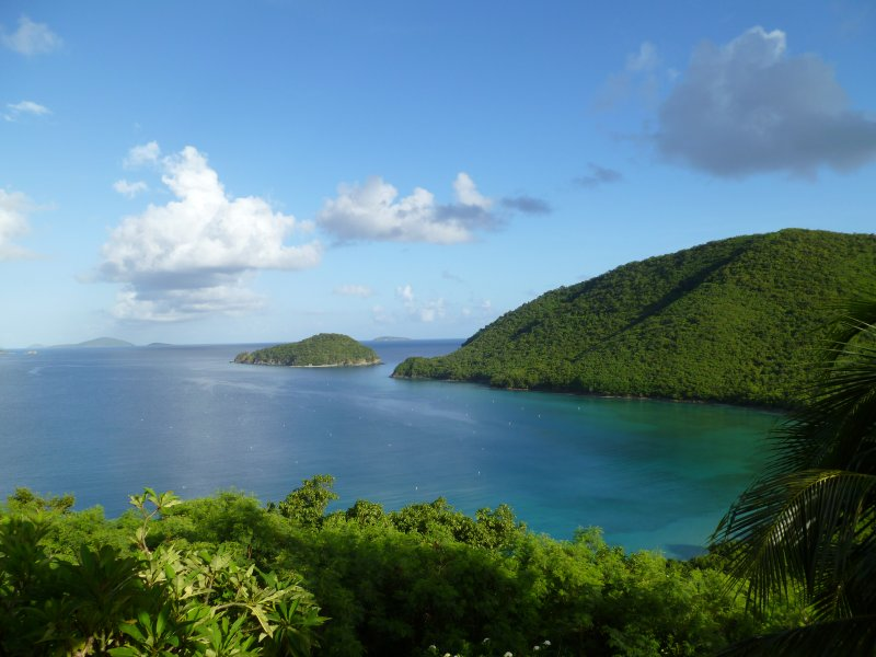View of Francis Bay from the back deck. - Magnificent Villa on St. John's North Shore - Maho Bay - rentals