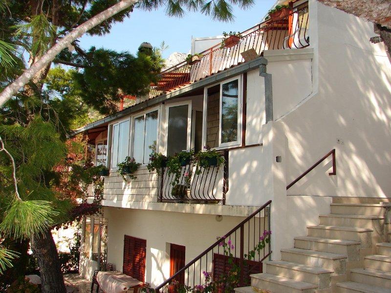 house - 01613BVOD A1(5) - Baska Voda - Baska Voda - rentals
