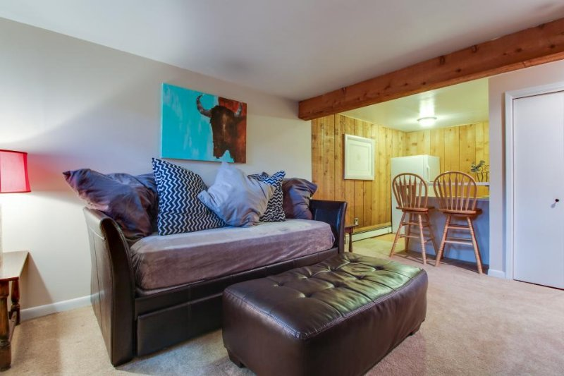 Cozy mountain condo in West Vail perfect for couples or small families! - Image 1 - West Vail - rentals