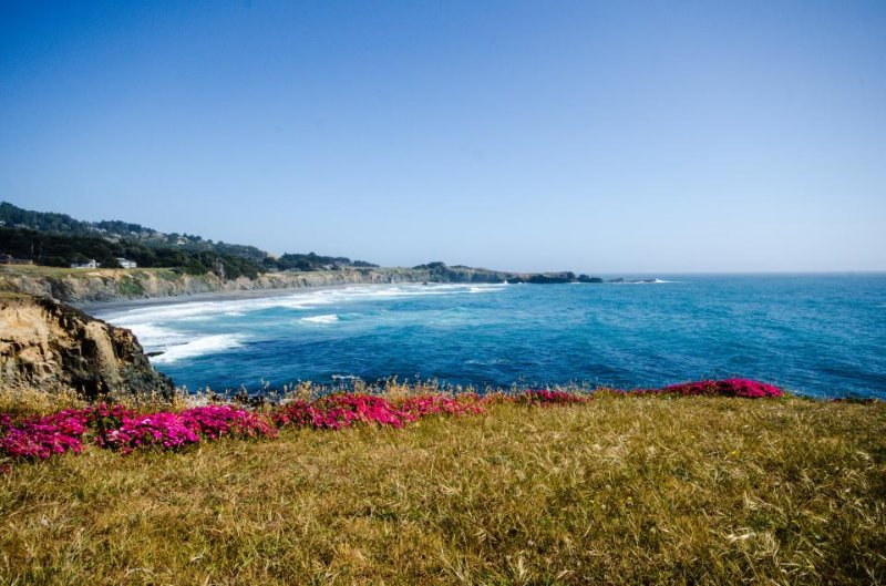 Gorgeous views, deck, hot tub, shared pool on an oceanfront bluff - dogs OK! - Image 1 - Sea Ranch - rentals