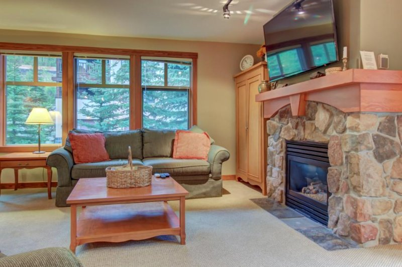Warm and welcoming ski-in/ski-out condo w/ access to pools, hot tubs, & more! - Image 1 - Solitude - rentals