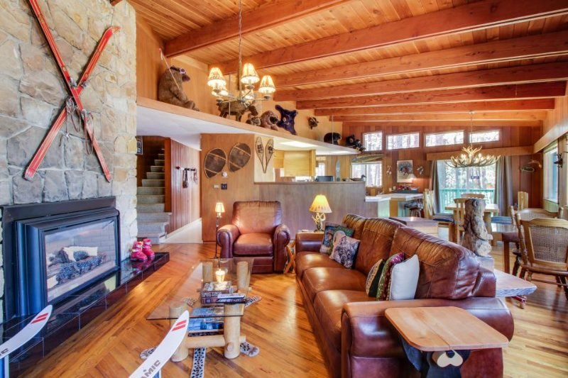 Eclectic alpine home, with private hot tub and great location! - Image 1 - South Lake Tahoe - rentals