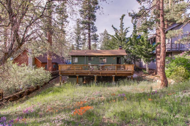 Dog-friendly, adorable mountain home with yard, great location - Image 1 - Big Bear Lake - rentals