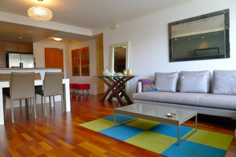 STYLISH AND SPACIOUS 2 BEDROOM AND 2 BATHROOM CONDOMINIUM WITH A DRAMATIC VIEW - Image 1 - San Francisco - rentals