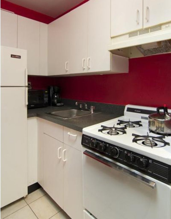 STUNNING AND FURNISHED 2 BEDROOM APARTMENT - Image 1 - New York City - rentals