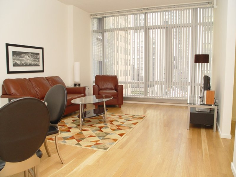 SPACIOUS AND LIGHT-FILLED 1 BEDROOM, 1 BATHROOM APARTMENT - Image 1 - New York City - rentals