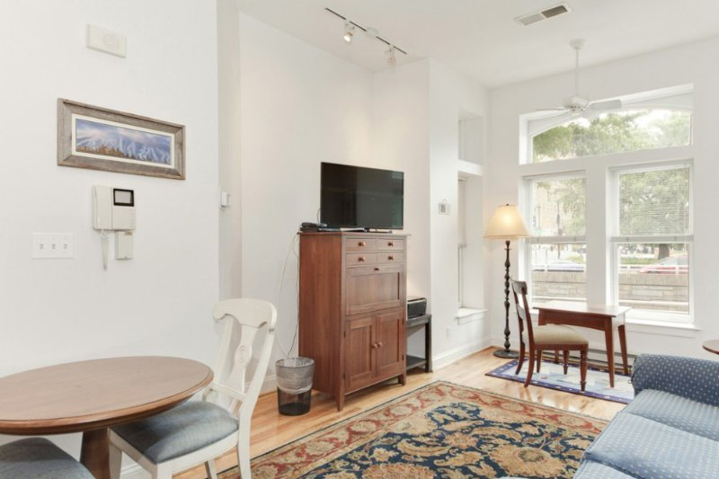 NEAT AND MAGNIFICENT FURNISHED 1 BEDROOM 1 BATHROOM TOWNHOUSE CONDOMINIUM - Image 1 - Rosslyn - rentals