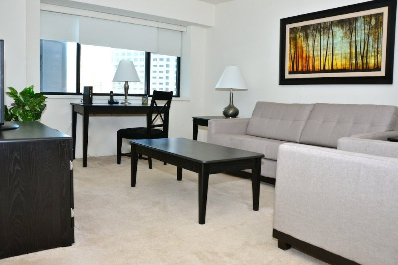 BEAUTIFULLY FURNISHED ONE BEDROOM, ONE BATHROOM APARTMENT - Image 1 - Boston - rentals
