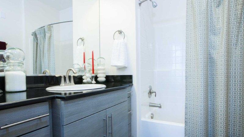 CHARMING FURNISHED 2 BEDROOM, 2 BATHROOM APARTMENT - Image 1 - San Jose - rentals