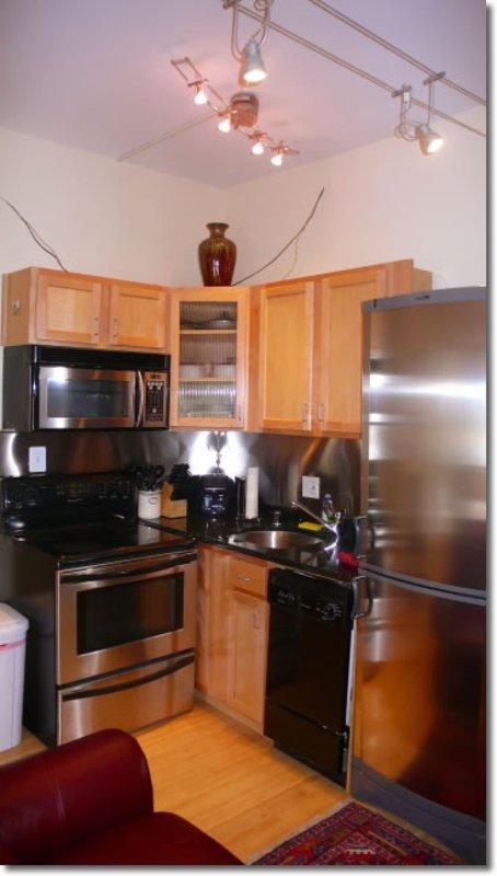 Furnished Studio Apartment at 15th St NW & Caroline St NW Washington - Image 1 - Washington DC - rentals