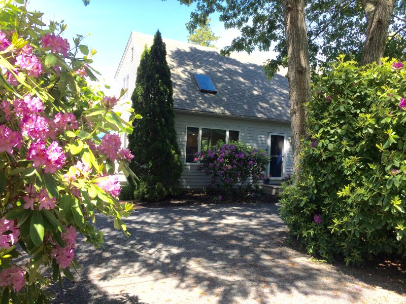 Beautiful Modern Cape near Craigville Beach - Beautiful Modern Cape Near Craigville Beach - West Hyannisport - rentals