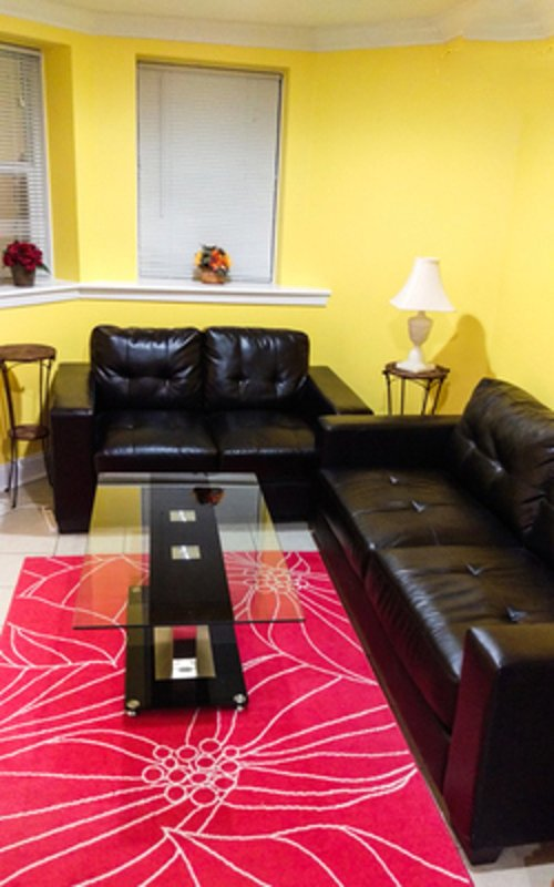 CHARMING AND MODERN 1 BEDROOM APARTMENT IN WASHINGTON - Image 1 - District of Columbia - rentals