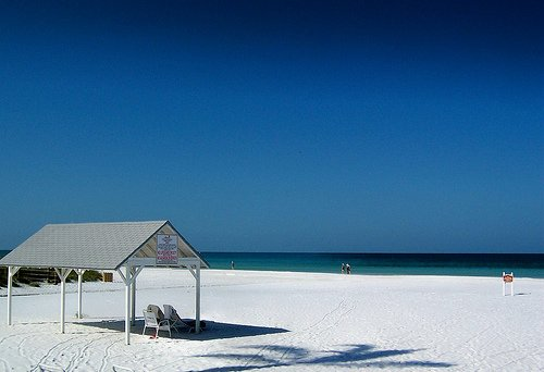 Siesta Key Villa  #1 Beach USA* Gulfside Condo* - Image 1 - Sarasota - rentals