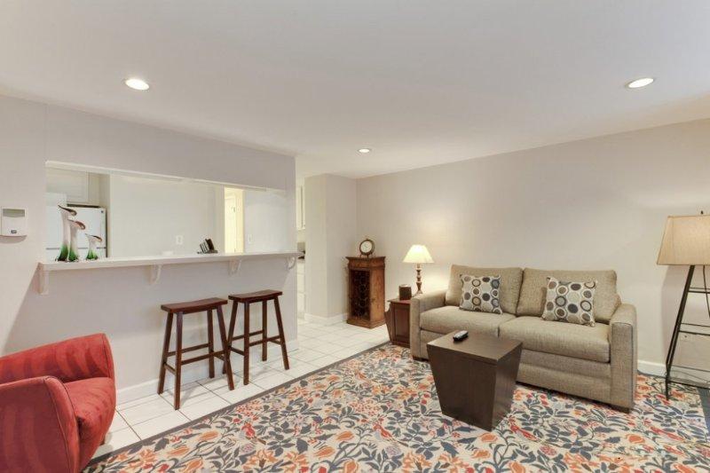 Neat and Lovely 1 Bedroom Condo in Washington - Image 1 - Washington DC - rentals
