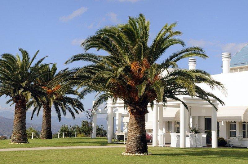 Island Vista - Image 1 - Kisangani - rentals