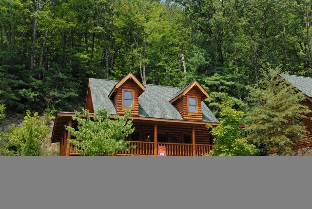 BEARY NAKED - Image 1 - Sevierville - rentals
