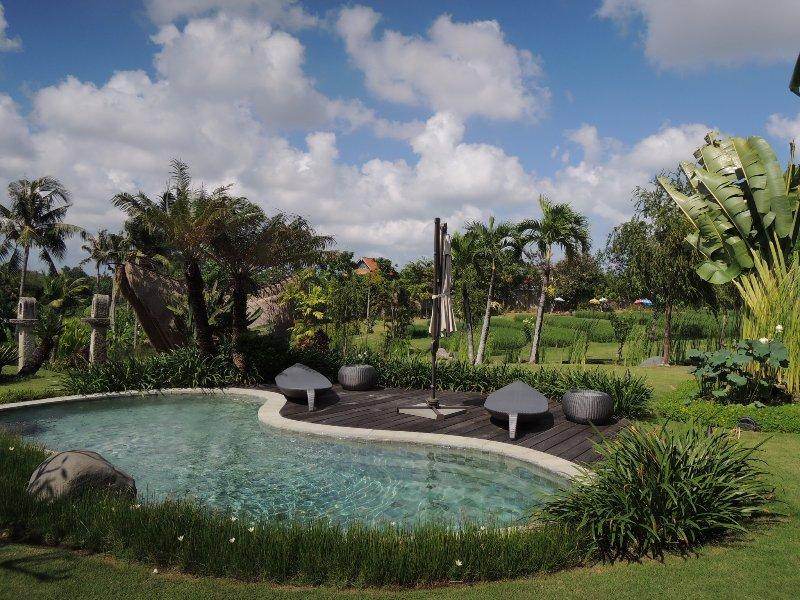 Hawa Sawah Villa - Image 1 - Canggu - rentals