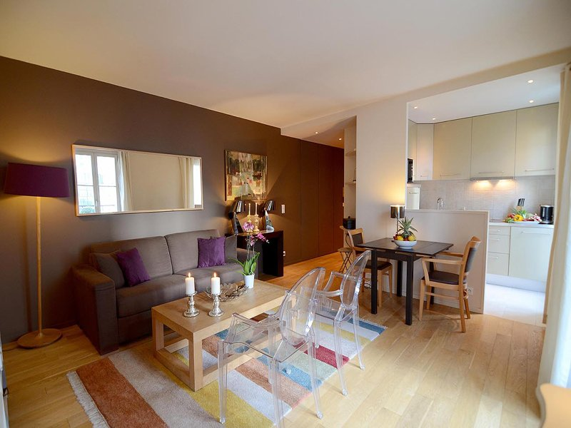 Living room, entry way and kitchen - Charming 1 Bedroom Apartment–Montparnasse in Paris - Paris - rentals