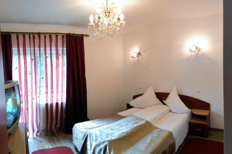 Cam 2 - Villa Balbi - Sinaia - rentals