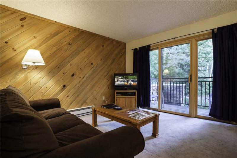 Scandinavian Lodge and Condominiums - SL201 - Image 1 - Steamboat Springs - rentals