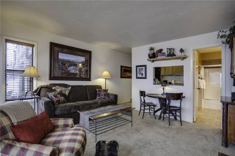 Storm Watch Condominiums - SW102 - Image 1 - Steamboat Springs - rentals