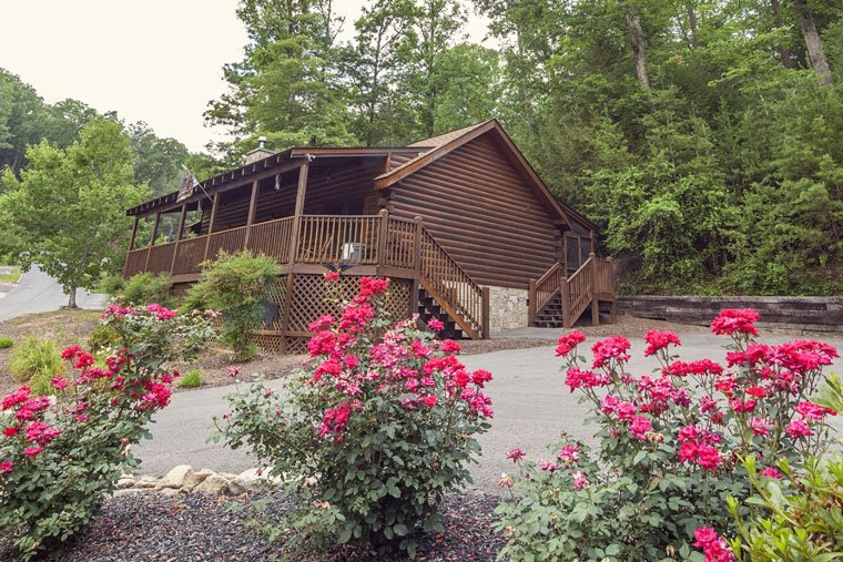 ER306 - A SMOKY MOUNTAIN DREAM - Image 1 - Pigeon Forge - rentals