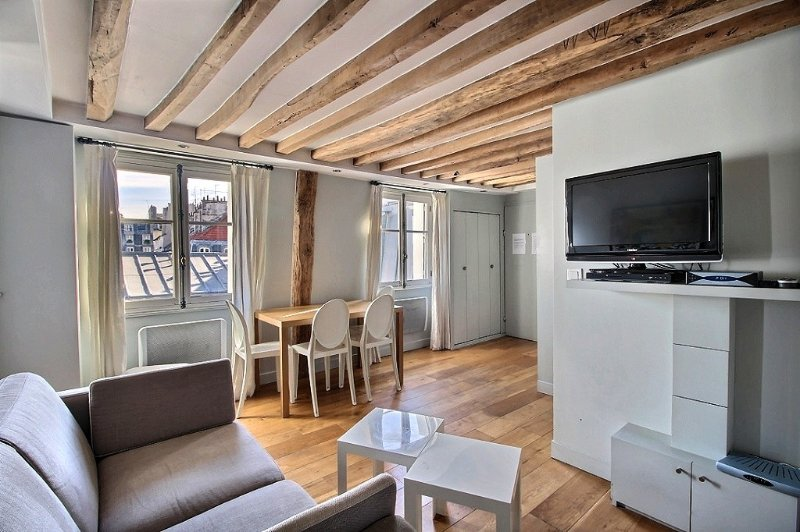 Living room with sofa bed and TV - St Anne: Fantastic 2BR and 2BA apartment -Opera area - Paris - rentals