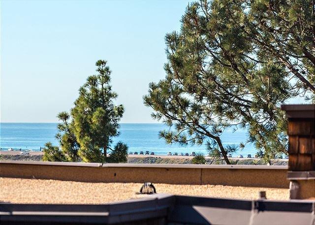 DM12925C Oceanview Condo - Image 1 - Del Mar - rentals