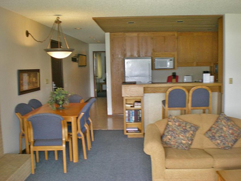Lake & mountain views, shared fitness gym, pool, hot tub, & more! - Image 1 - Chelan - rentals