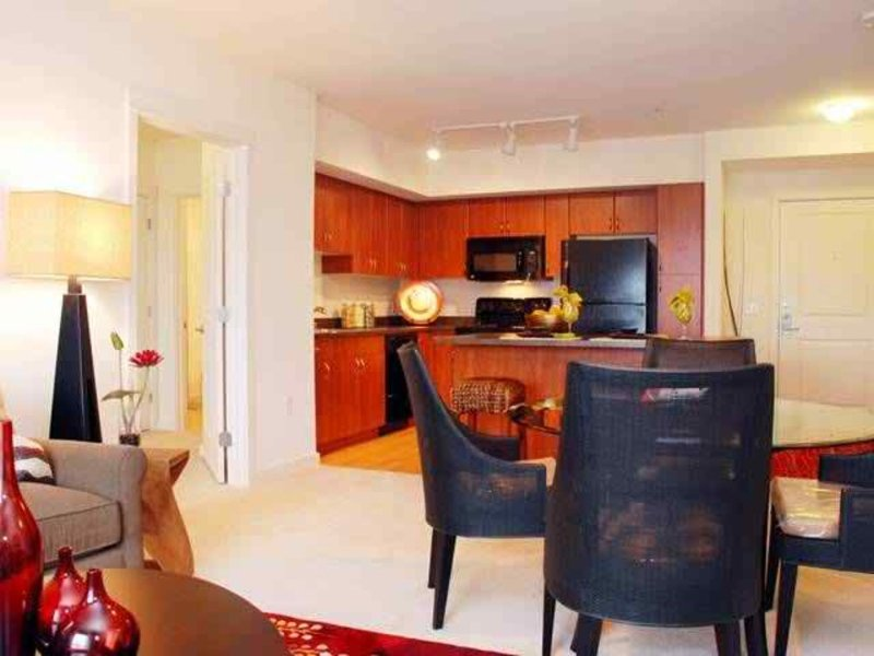 Beautiful 1 Bed Apartment - Image 1 - Bellevue - rentals