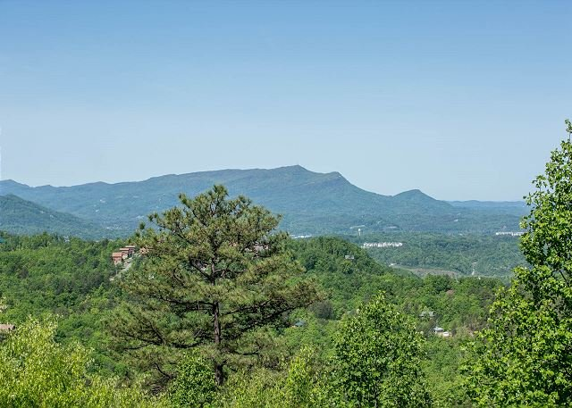 1BR Luxury Pigeon Forge Cabin Near Dollywood w/ Spectacular Views! Sleeps 4. - Image 1 - Sevierville - rentals