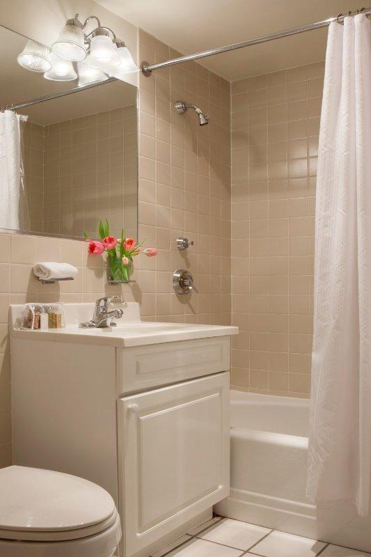 Furnished 2-Bedroom Apartment at Boylston St & Fairfield St Boston - Image 1 - Boston - rentals