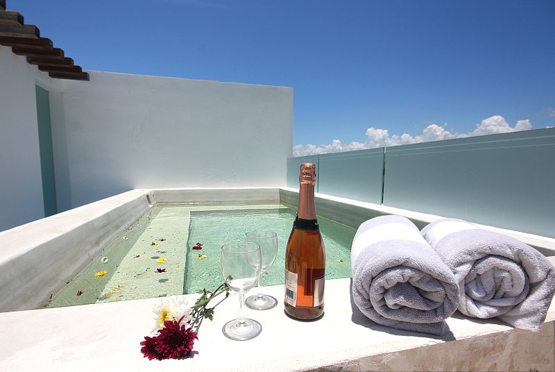 Private jacuzzi and rooftop just for you and your friends or family - Private Terrace With A Pool! PH Perfect For 8 - Playa del Carmen - rentals