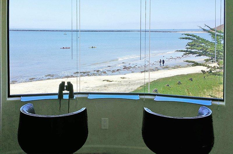 Exotic Tropical MAVERICKS Beachfront LOFT! - Image 1 - Half Moon Bay - rentals