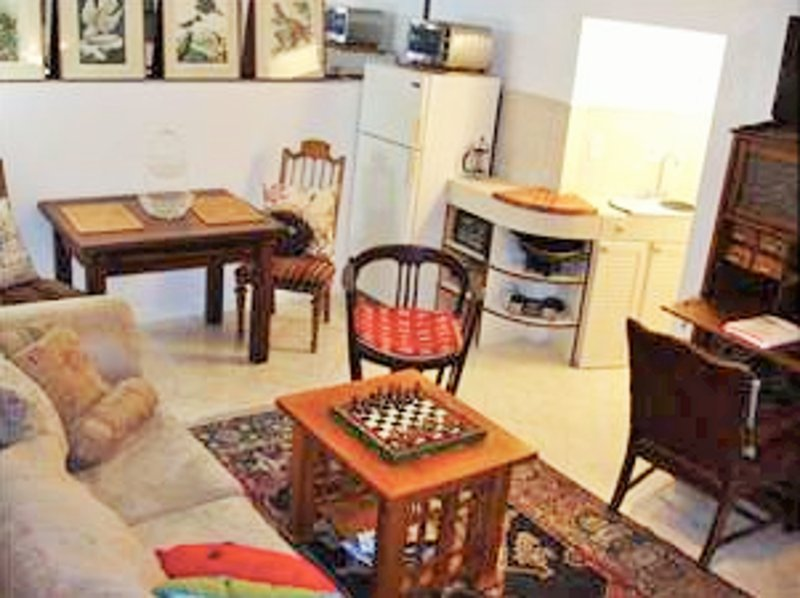 STUNNING 1 BEDROOM HOME IN SAN FRANCISCO - Image 1 - San Francisco - rentals