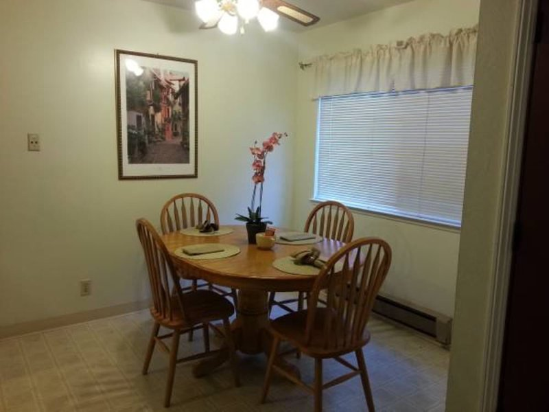 Large Furnished One Bedroom In Mountain View - Image 1 - Mountain View - rentals