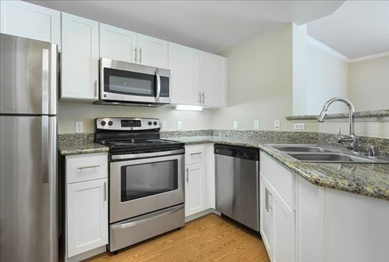 GORGEOUS 1 BEDROOM APARTMENT IN SAN MATEO - Image 1 - Belmont - rentals