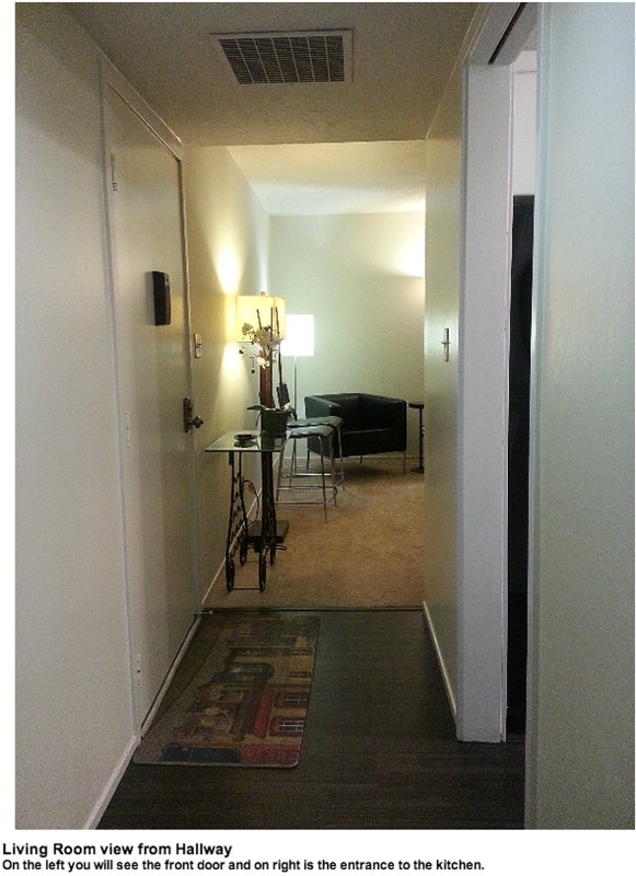 GORGEOUS AND FURNISHED 1 BEDROOM CONDO IN MOUNTAIN VIEW - Image 1 - Mountain View - rentals