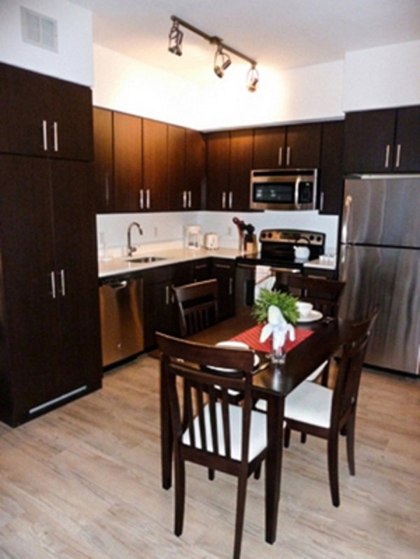 GORGEOUS AND REMARKABLY FURNISHED 1 BEDROOM APARTMENT - Image 1 - Washington DC - rentals