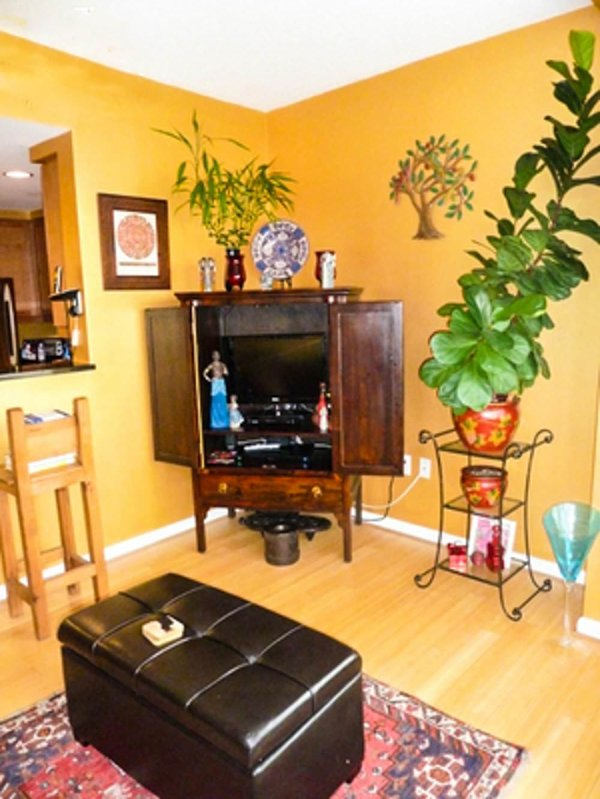 SPACIOUS AND MODERN 1 BEDROOM APARTMENT IN WASHINGTON - Image 1 - Washington DC - rentals
