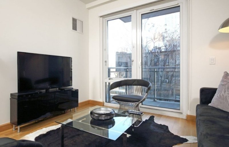 Delicate and Sleek 1 Bedroom Apartment in NYC - High Ceilings - Image 1 - New York City - rentals