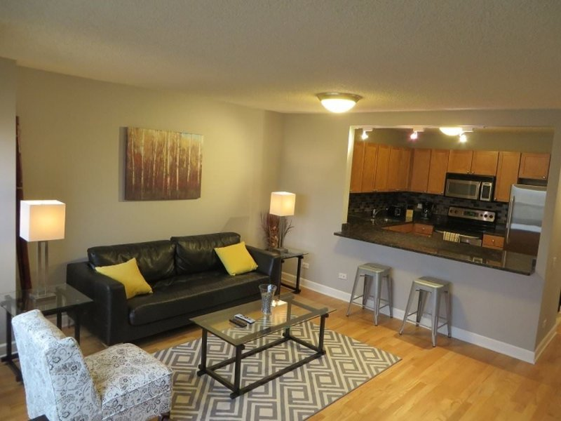 SUPERB AND SPOTLESS FURNISHED 1 BEDROOM 1 BATHROOM CONDOMINIUM - Image 1 - Chicago - rentals
